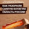 Тираж книги, не понравившейся подмосковным чиновникам, выкуплен и арестован