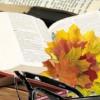 Сегодня в Белгороде стартовали Осенние Дни литературы