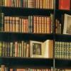 Выдающиеся современные писатели составили списки величайших книг всех времён