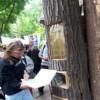 Древесный буккроссинг на берлинской улице