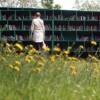 Санкт- Петербург: на свежем воздухе читать приятнее