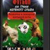 Николай Яременко «Футбол на грани нервного срыва. Разборки и скандалы народной игры»