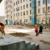 Полдень. XXI век… Петербург, мальчик, книги