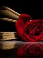 Роза в каждом томе: лучшие книги с «розой» в названии