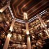 Редким книгам — редкое архитектурное решение!