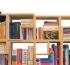 Новый тип расстановки книг — интересно даже кошкам!