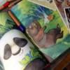 Лучшие книги для детей: Павел Калмыков «Лето разноцветно-косолапое»
