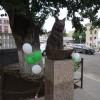 В центре Оренбурга появился ученый кот