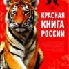 Ученые спорят о том, какой должна быть новая Красная книга России