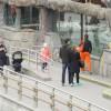 В зоопарке Москвы расскажут о влиянии животных на творчество литераторов