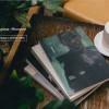 Журнал «Носорог» присоединился к медиаартели «Мамихлапинатана»