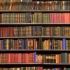 23 апреля отмечается Всемирный день книги и авторского права
