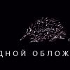 «Порядок слов» приглашает на презентацию сборника современной квир-поэзии