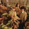 В Перми учат английский язык по книгам о Гарри Поттере
