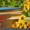 5 книг этого лета, которые нельзя было пропустить
