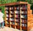 Летом в 25 парках Подмосковья откроют мини-библиотеки