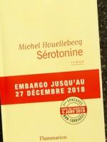 Новогодний подарок читателям от Мишеля Уэльбека