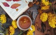 10 новых книг для непогожих осенних вечеров