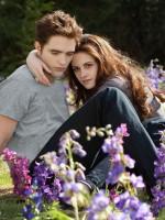 Вампиры, экшн и любовь: пятерка захватывающих книг