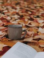 Самые ожидаемые книжные новинки октября