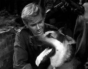 """Шарик - кадр из фильма """"Четыре танкиста и собака"""""""
