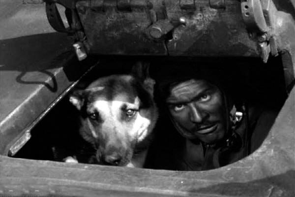 кадр из фильма Четыре танкиста и собака