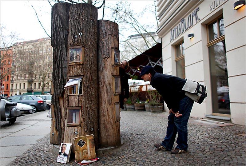 Книжный лес - буккроссинг в стволах деревьев