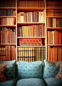 диван и много книжных полок