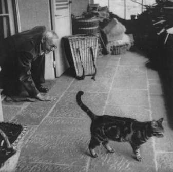 Герман Гессе с котиком