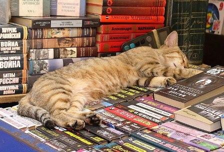 Одесский книжный рынок