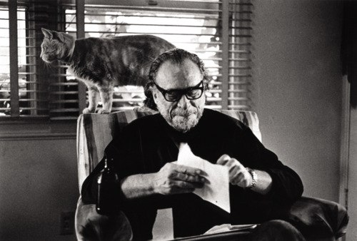 ...и ещё раз Чарльз Буковски с котиком