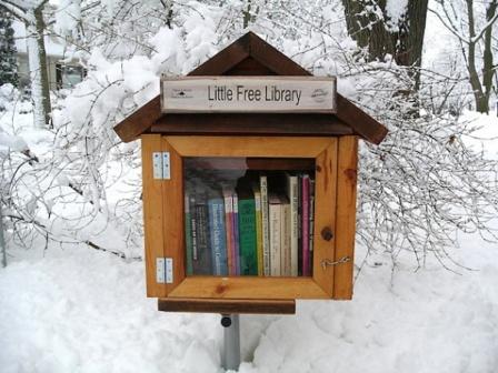 Little Free Library - библиотечный домик зимой