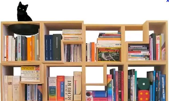 кошка недоумевает - как расставлены здесь книги?