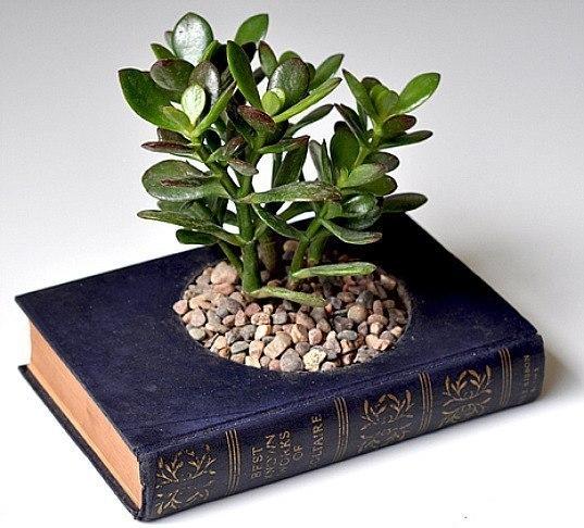 горшок для цветов из книги
