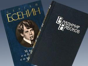 Набоков Есенин школа запрет, Курбангали Шарипов уволен, заявления о запрете книг в школах, новости литературы, литература в школе