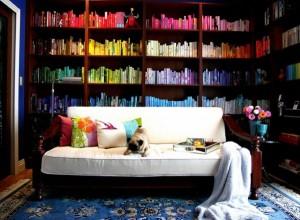 Идея для домашней библиотеки, расставьте книги по цветам, литература в картинках
