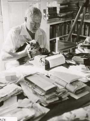 Шестипалые коты в доме-музее Хемингуэя