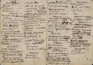 поваренная книга жены Толстого, Лев Николаевич Толстой, Софья Андреевна Толстая, кулинарные книги