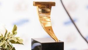 Ясная Поляна, премии по литературе, литературные премии