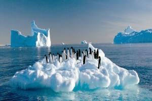 10 лучших книг, книги об Антарктиде, что читать