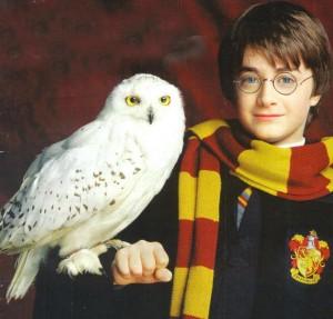Гарри Поттер и Букля1