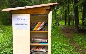 lesnaya-biblioteka-v-Permi