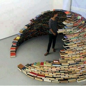 An Igloo made of books