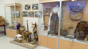 Музей Салтыкова-Щедрина1